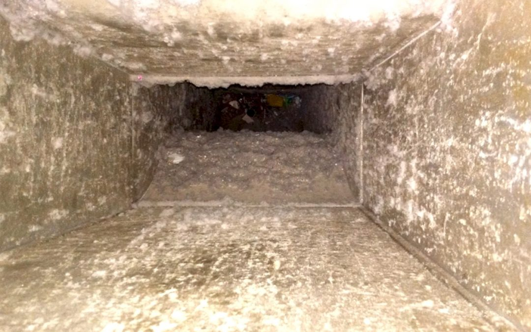 Warning Signs for Dirty Air Ducts